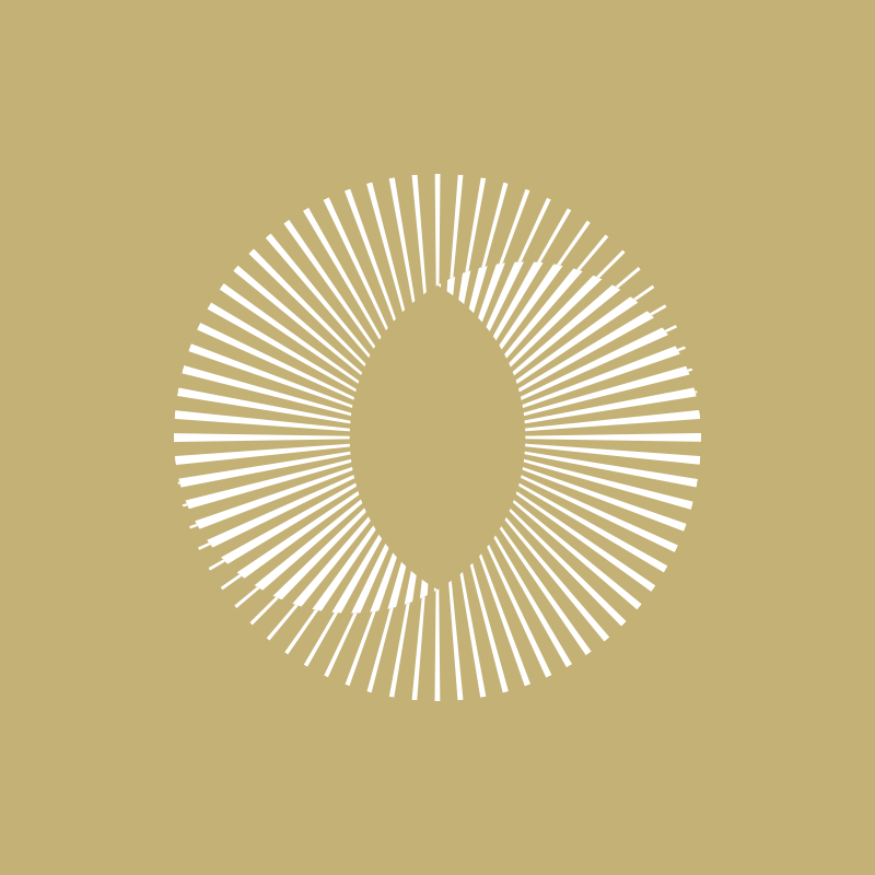 logo-notaire-office-notarial-bleu-autograff-graphiste-freelance-toulouse-2018-monogramme-blanc