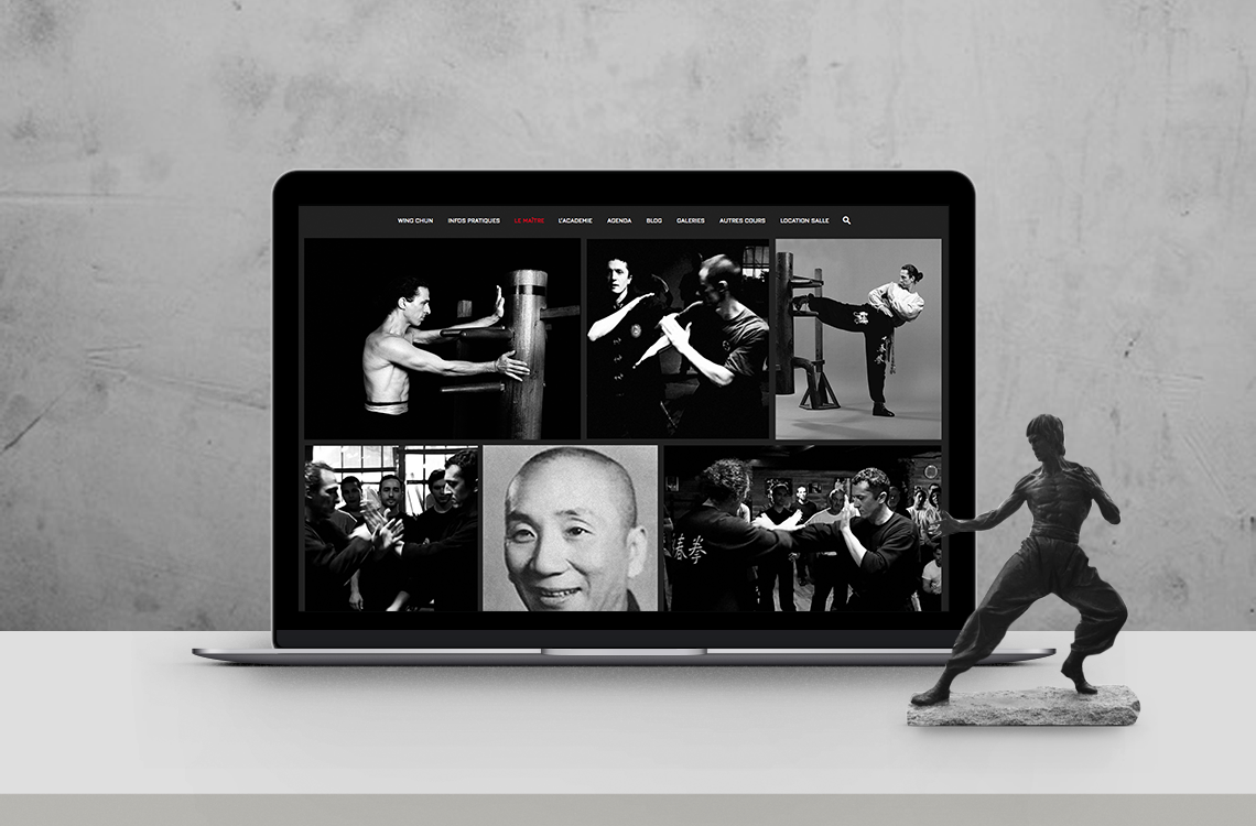 website-design-ecole-arts-martiaux-kung-fu-wing-chun-autograff-graphiste-freelance-toulouse-page-galerie-photos